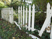 white picket fence six