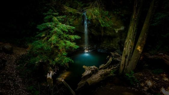 waterfalls-in-the-woods